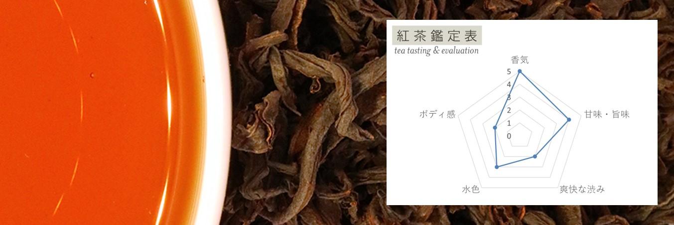 紅茶鑑定表の見方