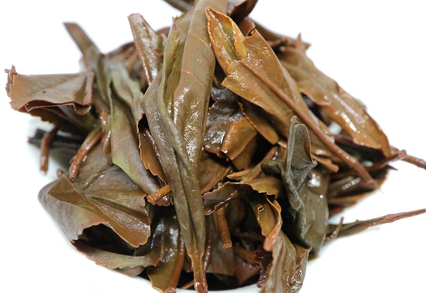 【岩永製茶園】たまみどり2nd 茶殻