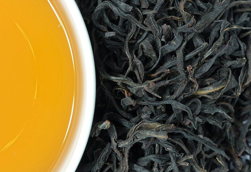 お茶のカジハラ いずみ1st 2021